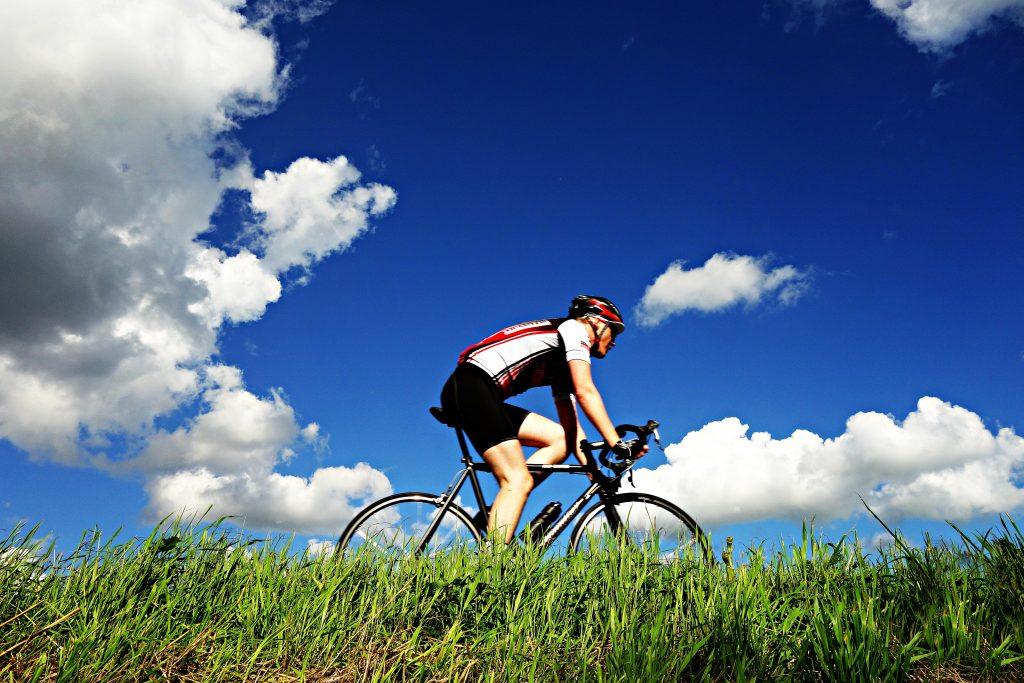 Eddy Merckx, Tom Boonen, Roger De Vlaeminck i Freddy Maertens,